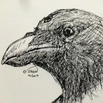 Three-eyed Crow Sketch - Pen